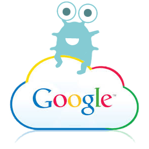 google cloud platform_amoeba networks
