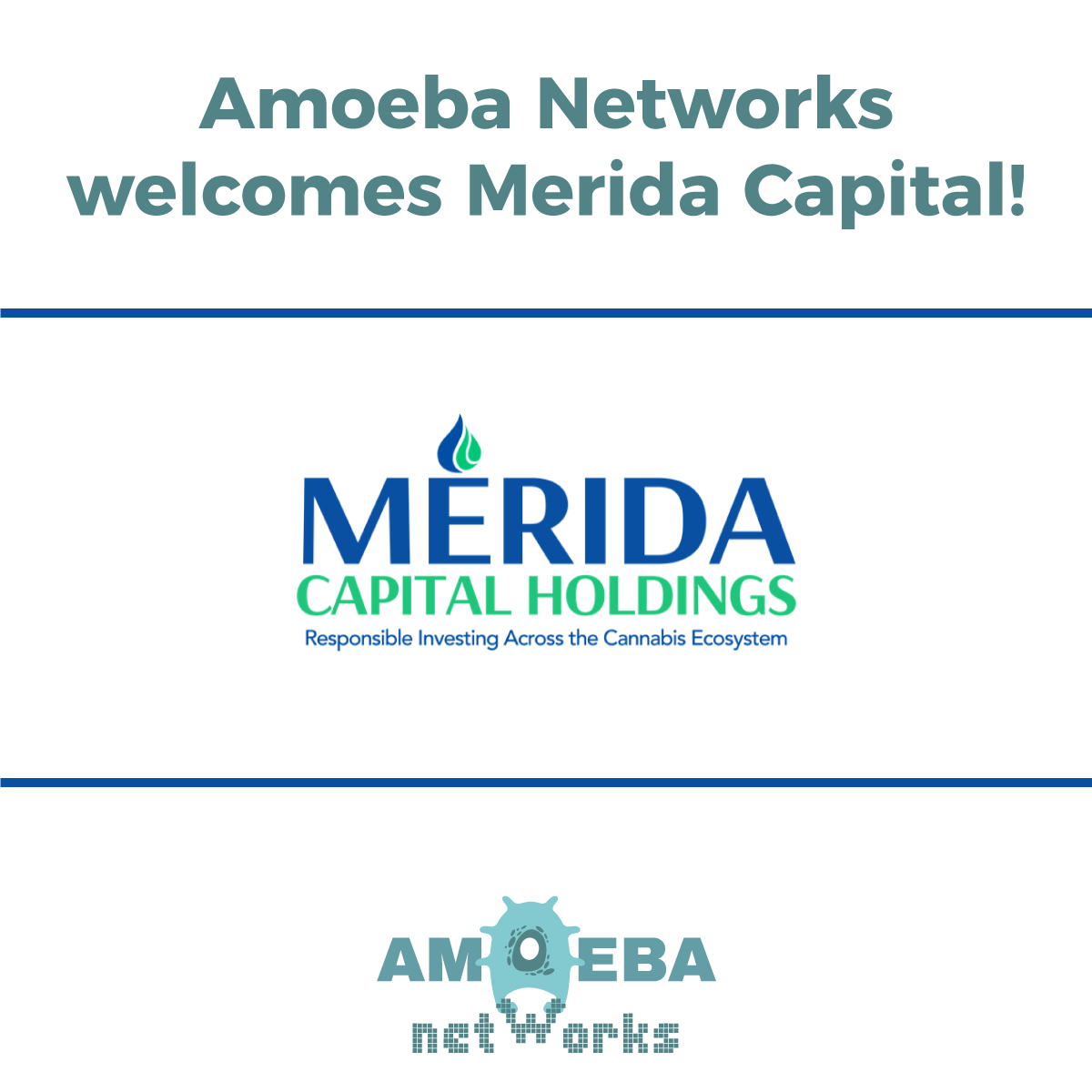 Amoeba Networks welcomes Merida Capital